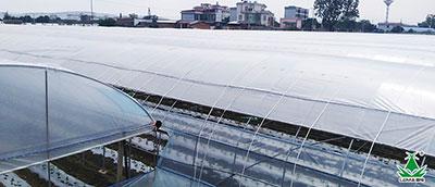 【服务小贴士】冬季严寒天气来临,温室大棚该如何安全越冬?