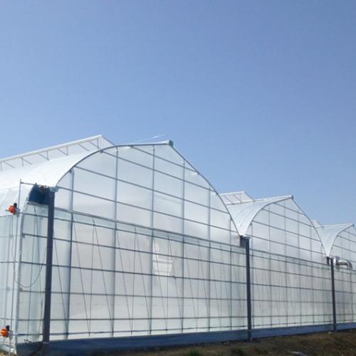 【品牌专栏】好棚就用希爱农!高端温室农膜缔造者!