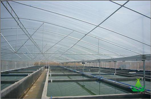 水产养殖大棚膜案例