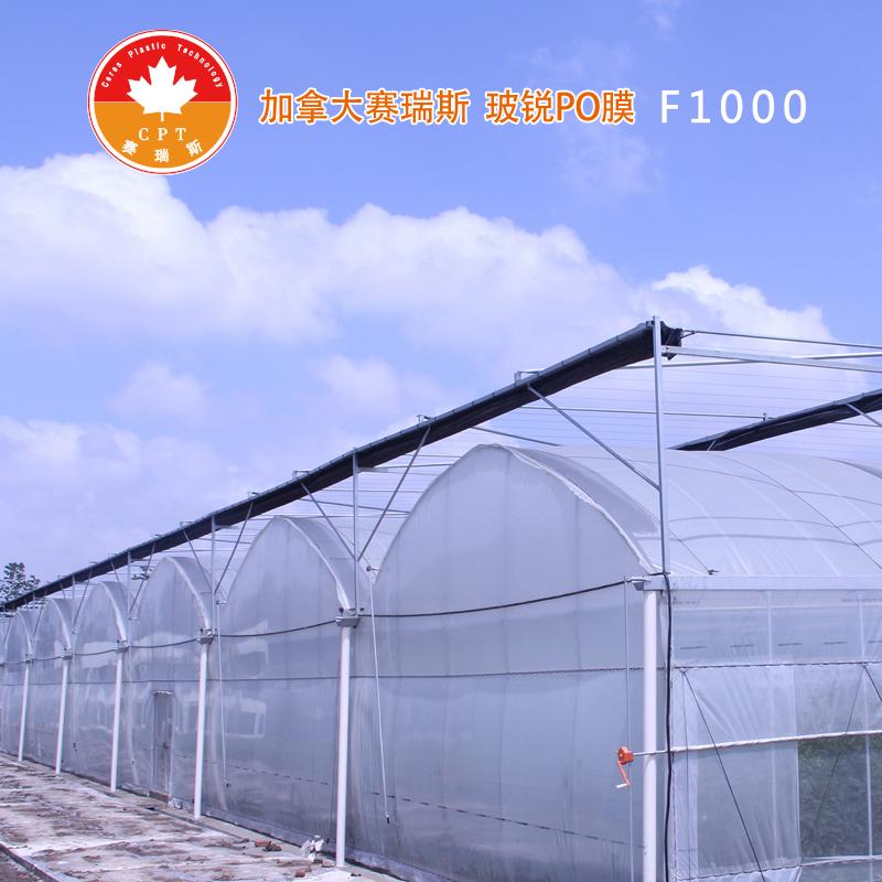 [雷马农膜]加拿大赛瑞斯 PO膜 F1000 长效流滴消雾膜