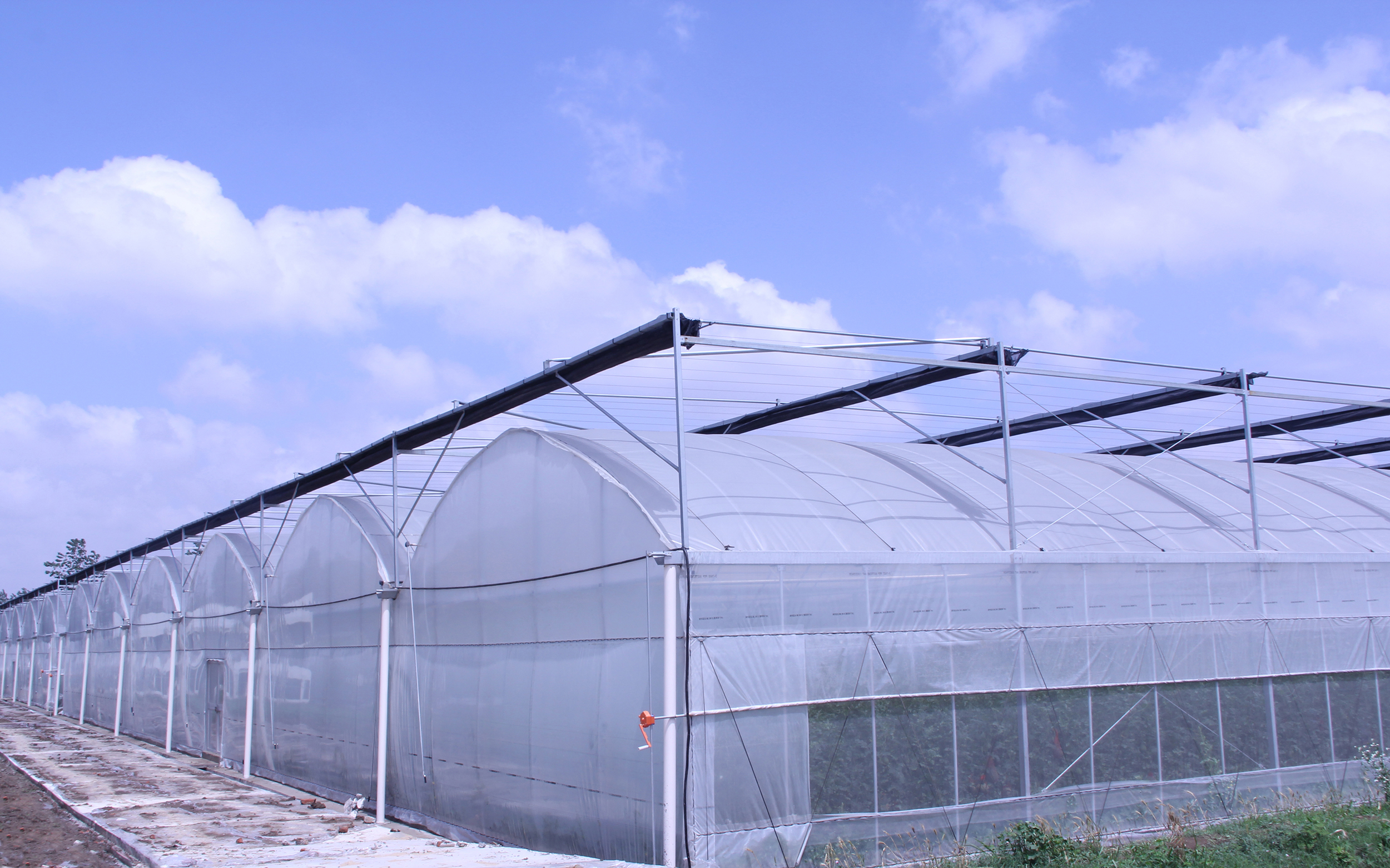 温室大棚膜_连栋温室大棚方案介绍|大棚膜工程解决方案-雷马塑料-散光膜