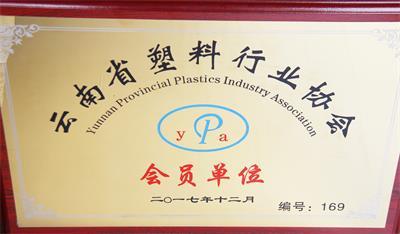 雷马荣誉-塑料行业协会单位